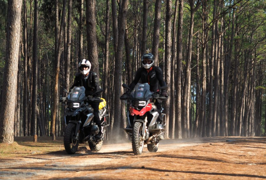 TH_2riders_forest2_Bom